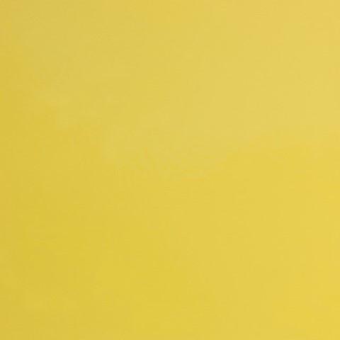 Statewide Lemon Yellow