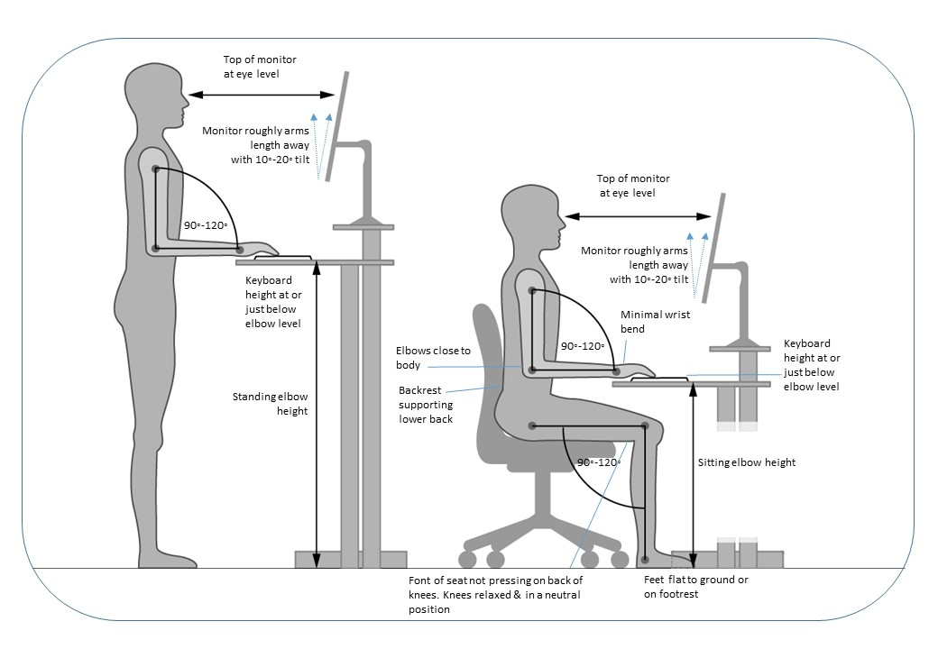 ergonomic info